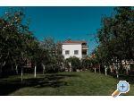 Apartments Ivi�i� - Pako�tane Croatia