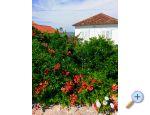 Appartamento Tkon - ostrov Pa�man Croazia