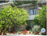 Apartments Draga - Podgora Croatia