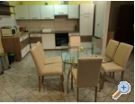 Appartements Dragica! - Pore� Kroatien