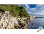 Apartmanok Andela - ostrov Rab Horvátország