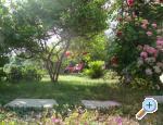 Villa Lolo - ostrov Rab Chorvátsko