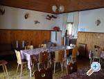 Villa Lolo - ostrov Rab Horvátország
