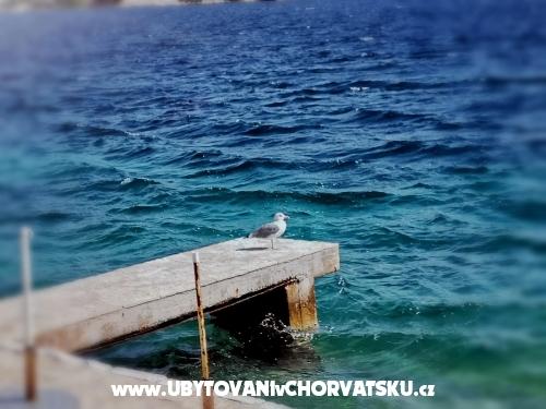 Dům Roko - Rogoznica Chorvatsko