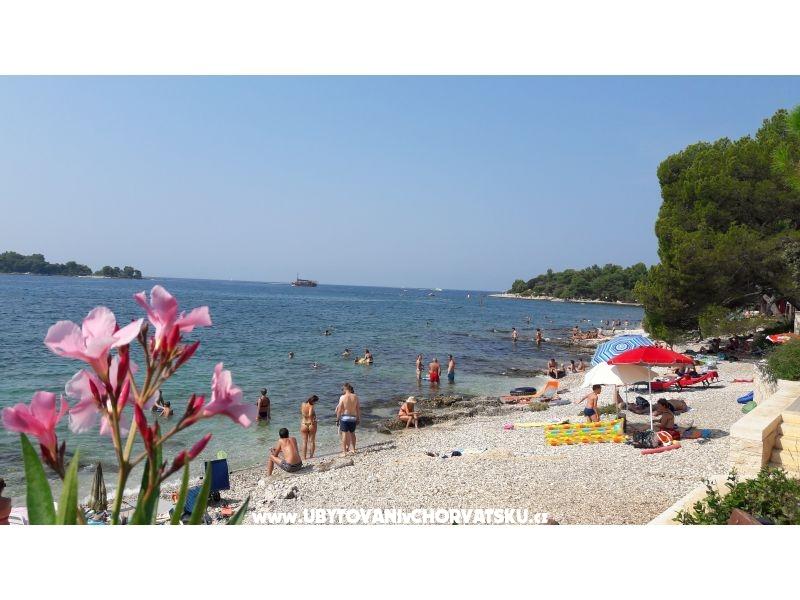 Ferienwohnungen & Haus Samsa | Rovinj, Kroatien Borik ...