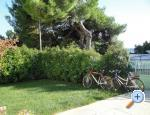 Apartments Govi� - �ibenik Croatia