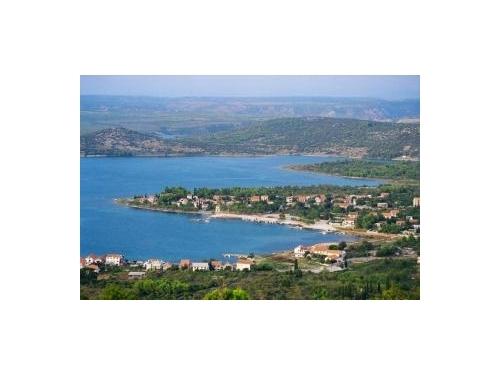 Dalmatian - Šibenik Hrvaška