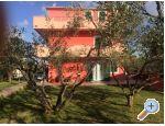 Appartamenti Villa Magnolija - Šibenik Croazia