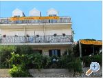 Pension Lobrovi� - Slano Croatie