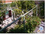 Ferienhaus Villa Marijeta - ostrov Šolta Kroatien