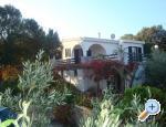 Villa Bepina