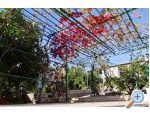 Apartment Jelena - Trogir Kroatien