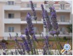 Villa Marija agroturizam apartmani Trogir smještaj Hrvatska