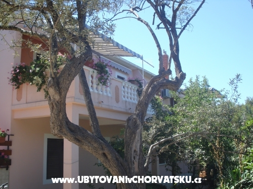 Apartmanok Branko Vidaković - ostrov Ugljan Horvátország