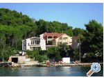 Island of Ugljan Apartments Tereza