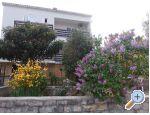 Kuća za odmor Ivan - ostrov Ugljan Hrvatska