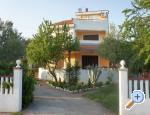 Island of Ugljan Apartments Mirjana
