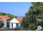 Appartamenti Mirjana - ostrov Ugljan Croazia