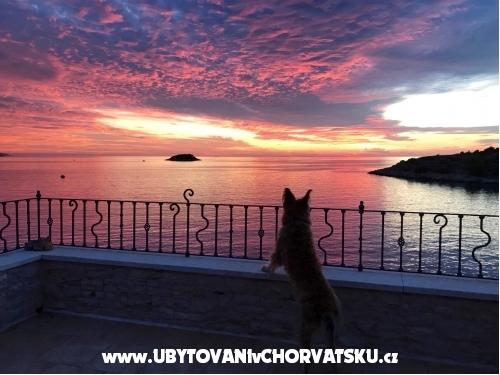 Villa Kamen - Vela Luka – Korčula Hrvatska