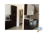 Appartements Delfin - ostrov Vir Kroatien