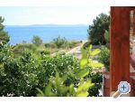 Apartmani Delfin - ostrov Vir Hrvatska