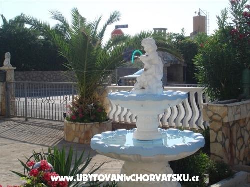 Apartamenty Debeljak - ostrov Vir Chorwacja