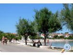 Apartment IVA - ostrov Vir Croatia