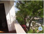 Appartements Galunić - ostrov Vir Croatie