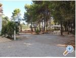 Appartements Liveric - ostrov Vir Kroatien