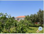 Apartments Liveric - ostrov Vir Croatia