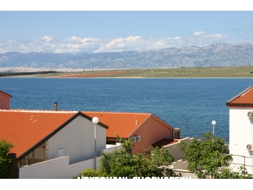 Vila Filipasic - ostrov Vir Croatie