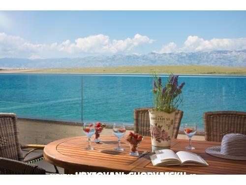 Villa Malibu Royal - ostrov Vir Croatia