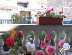 Apartments Jela - Vodice Croatia