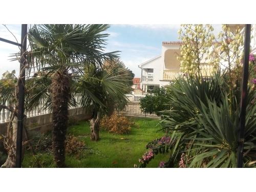 Appartements - Emelie - Vodice Croatie