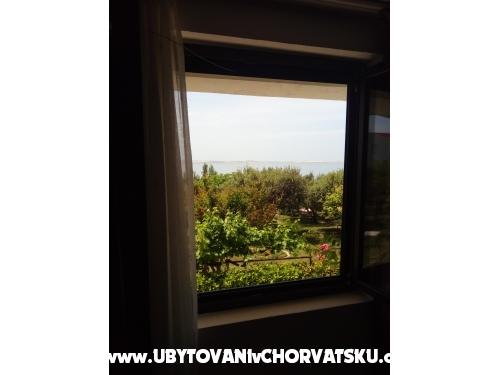 Apartamenty Devcic DZ - Zadar Chorwacja