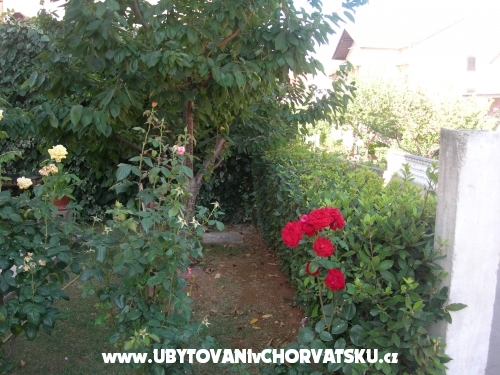 Apartmanok IRIS - Zadar Horvátország