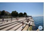 Apartamenty IRIS - Zadar Chorwacja