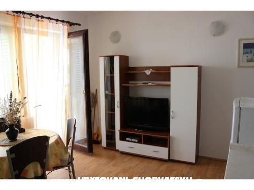 Apartamenty   ALBA - Zadar Chorwacja