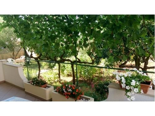 Villa Rosemarino - Zadar Croazia